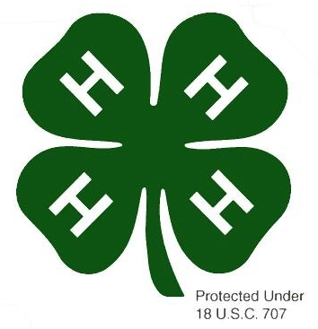 4 H Youth Development Hamilton County